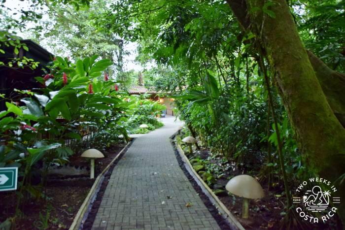 Paved path Ecotermales