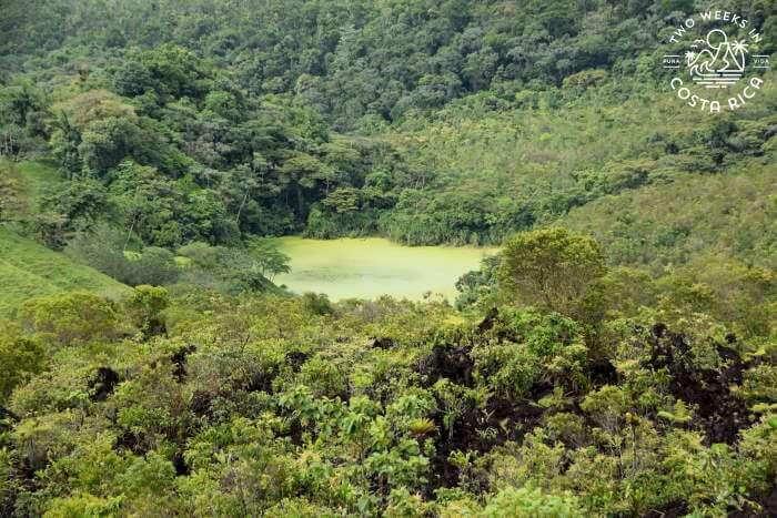 Green Lagoon View