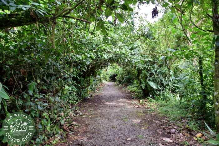 Easier Hiking Trail Mirador El Silencio