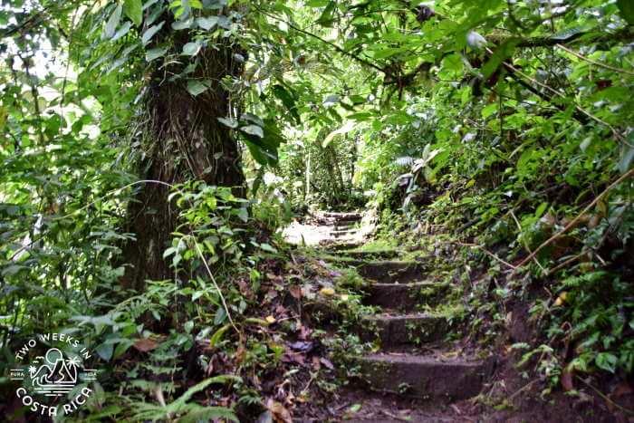 Challenging hike El Silencio La Fortuna