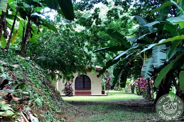 Casa Costa Rica