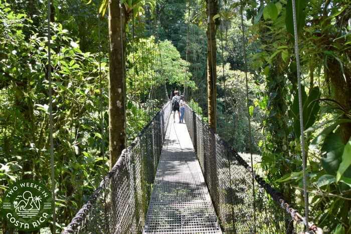 Mistico Hanging Bridges Arenal
