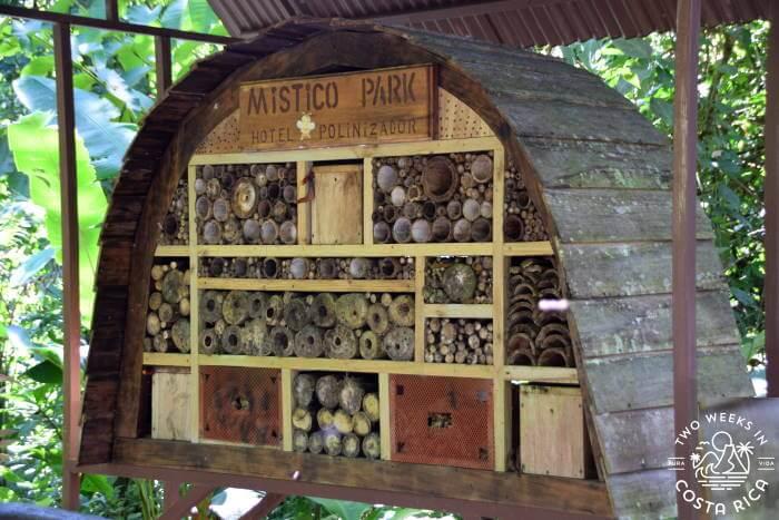 Bee House Exhibit Mistico