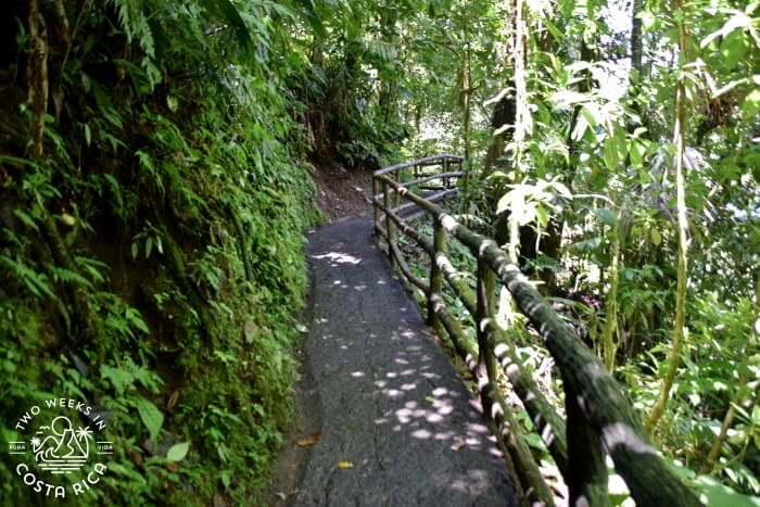 Concrete trail