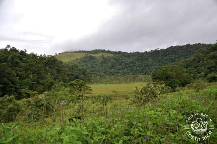 View Tapir Valley